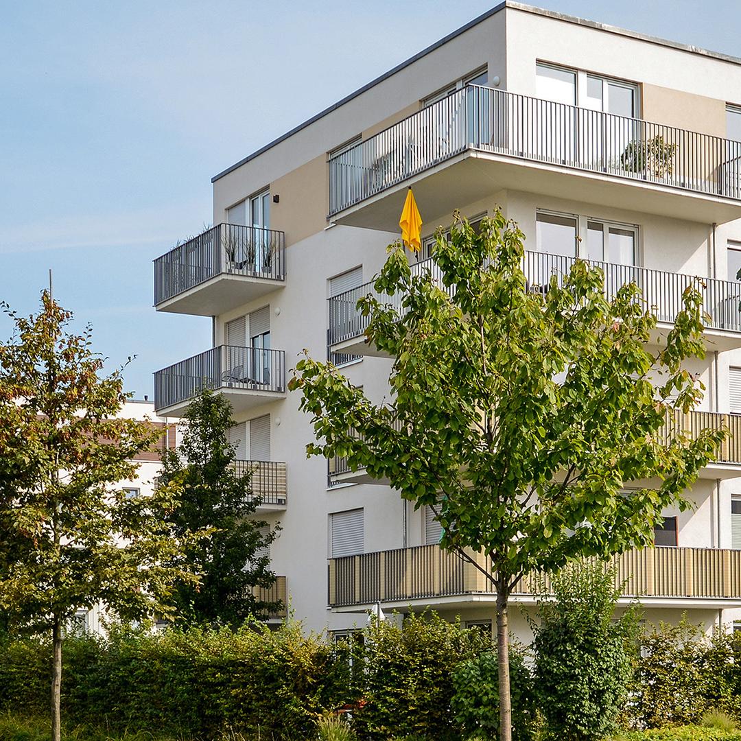 Immobilienkauf und -verkauf Erfahrungen, Marktkenntnisse und persönliches Engagement